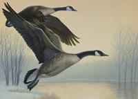 1996 Michigan Stamp Fine Art Print