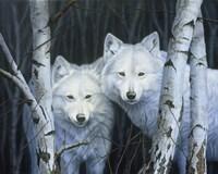 White Magic Fine Art Print