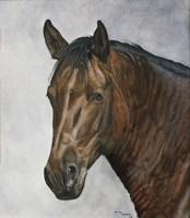 Horse Fine Art Print