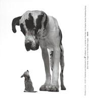 Best Friends Fine Art Print