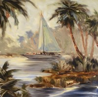 Palm Cove Two Fine Art Print