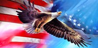 American Eagle Flag Fine Art Print