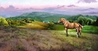 Delius Farm Fine Art Print