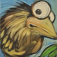 Feather Bird 24 Framed Print