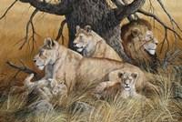 African Family Fine Art Print