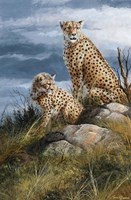 At Watch On The Plains Fine Art Print