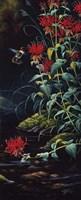 Ruby Throated Hummingbird Fine Art Print