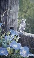 The Fledgling - Young Mockingbird Fine Art Print