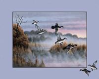 Ducks In Flight 2 Framed Print