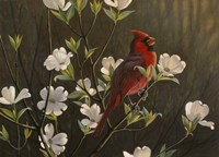 Spring Cheer Fine Art Print