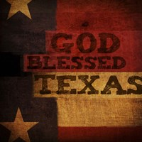 God Blessed Texas Framed Print