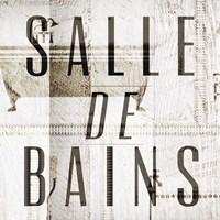 Salle de Bains II Framed Print