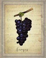 Grapes 1 Framed Print