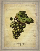 Grapes 2 Framed Print