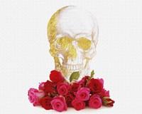 Rose And Skull Fine Art Print