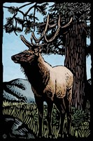 Elk 4 Framed Print