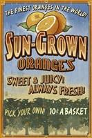 Sun Grown Oranges Framed Print