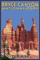 Bryce Canyon - Summer Fine Art Print