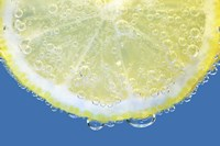 Lemon Slice Fine Art Print