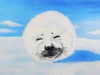 Harp Seal Fine Art Print