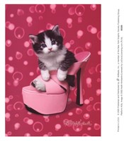 Platform Kitty Fine Art Print