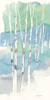 Aspens Panel II Framed Print
