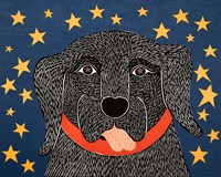 I See Stars Fine Art Print