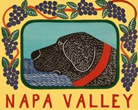 Napa Valley Framed Print