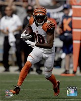 A.J. Green 2015 Action Framed Print