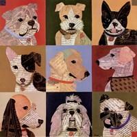Nine Loves Fine Art Print