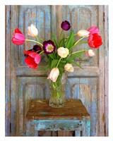 Tulips, Mexico Fine Art Print