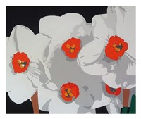 White Narcissus Fine Art Print