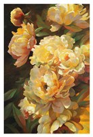 Peonies for Springtime Fine Art Print