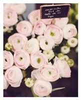 Flower Market Fine Art Print