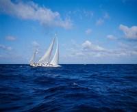 Sailboat in the Bahamas Fine Art Print