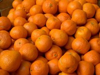 Oranges for Sale, Fes, Morocco Fine Art Print