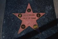 Hollywood Walk of Fame Star, Los Angeles, CA Fine Art Print