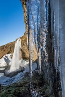Seljalandsfoss Waterfall in the Winter, Iceland Fine Art Print