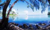 Rope Swing Over Water, Florida Keys Fine Art Print