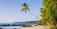 Montezuma Beach, Nicoya Peninsula, Costa Rica Fine Art Print