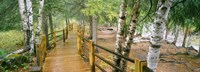 Gooseberry River, Gooseberry Falls State Park, Minnesota Fine Art Print