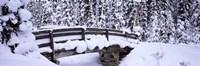 Snowy Bridge in Banff National Park, Alberta, Canada Fine Art Print