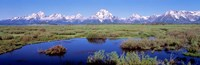 Grand Teton Park, Wyoming Fine Art Print