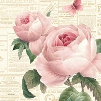 Roses in Paris VI Fine Art Print
