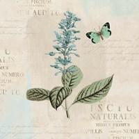 En Bleu VI Fine Art Print