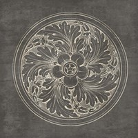 Rosette II Gray Framed Print