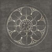 Rosette III Gray Framed Print
