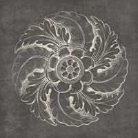 Rosette IV Gray Framed Print