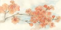 Peach Blossom I Framed Print