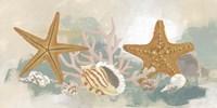Marine Tableau II Framed Print